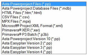 Project software import export